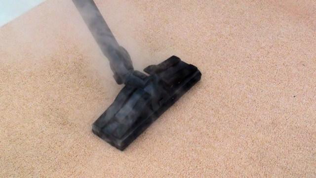Comment liminer les punaises de lit avec un nettoyeur aspirateur vapeur s che aspirateur - Punaise de lit traitement vapeur ...