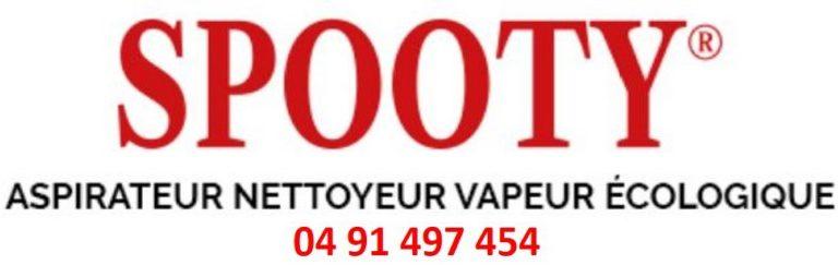 Aspirateur Nettoyeur Vapeur Spooty
